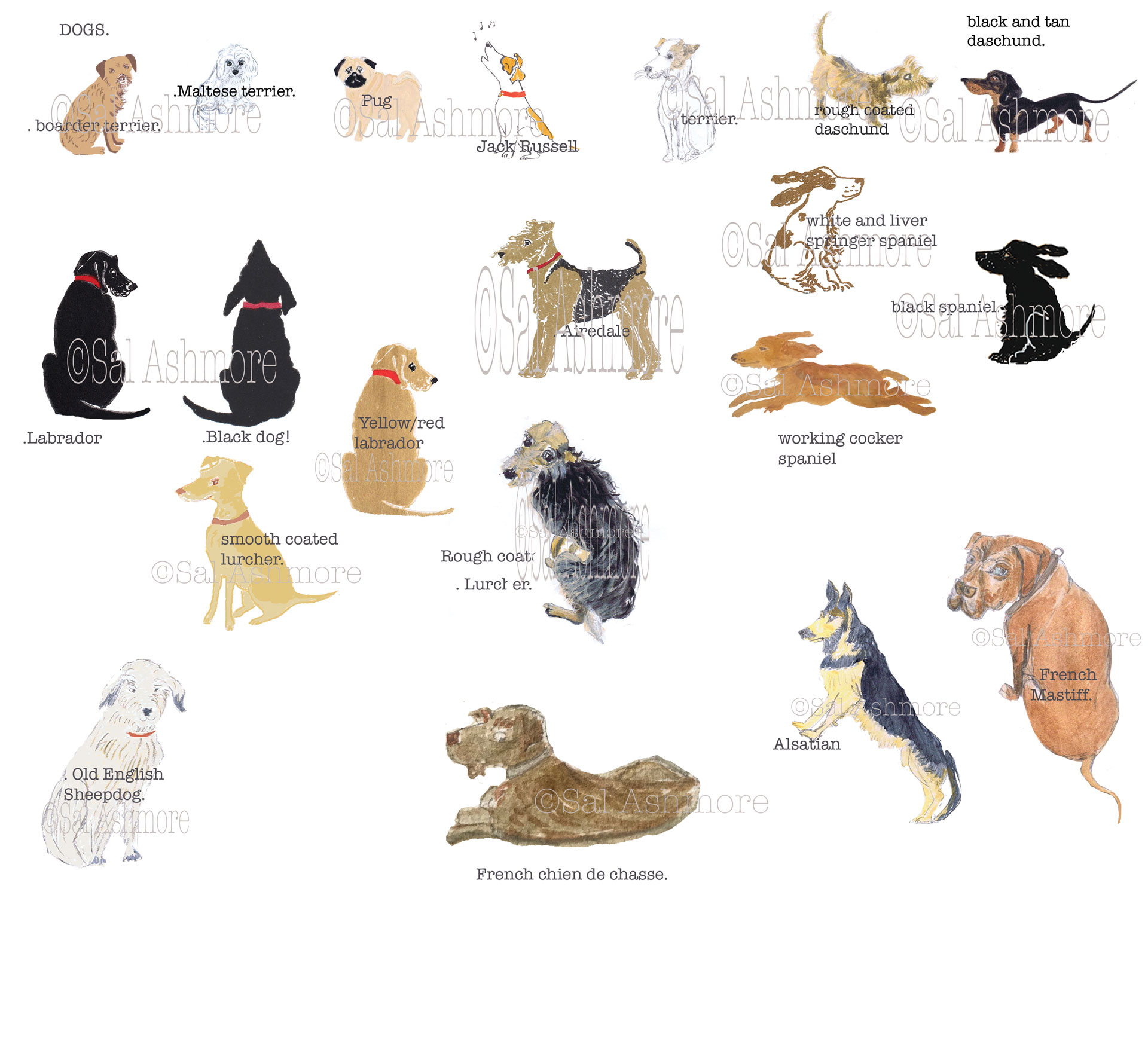 DOGS-watermarked