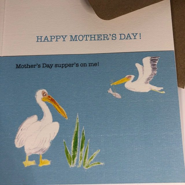 """Mummy pelican watches her your teenager fly in carrying a gift wrapped fish in it's beak and squawk 'mother's Day supper's on me!"""""""