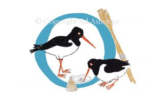 Story Letter Print O - Oystercatchers in Argyll